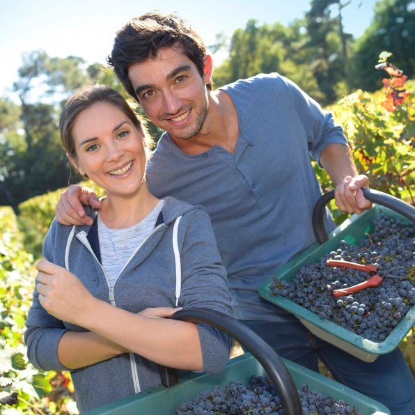 Young couple of wine-growers walking in vine rows